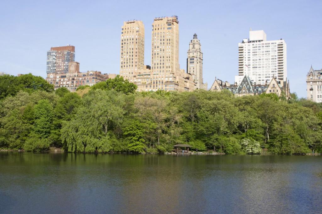 Живописные виды центрального парка часто используются как декорация в голливудских фильмах