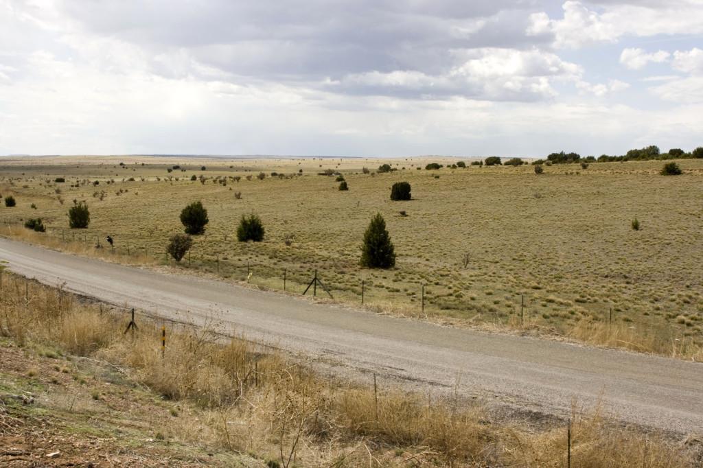 Пустынные пейзажи восточного Техаса