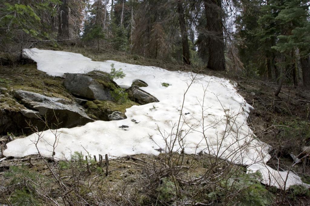 Всего час назад в долине была +25, а на высоте около 2600 метров на склонах уже лежит снег