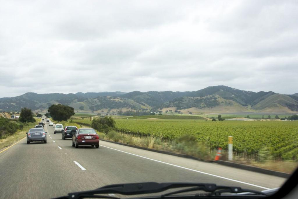 Дороги Калифорнии. Слева и права бесконечные плантации
